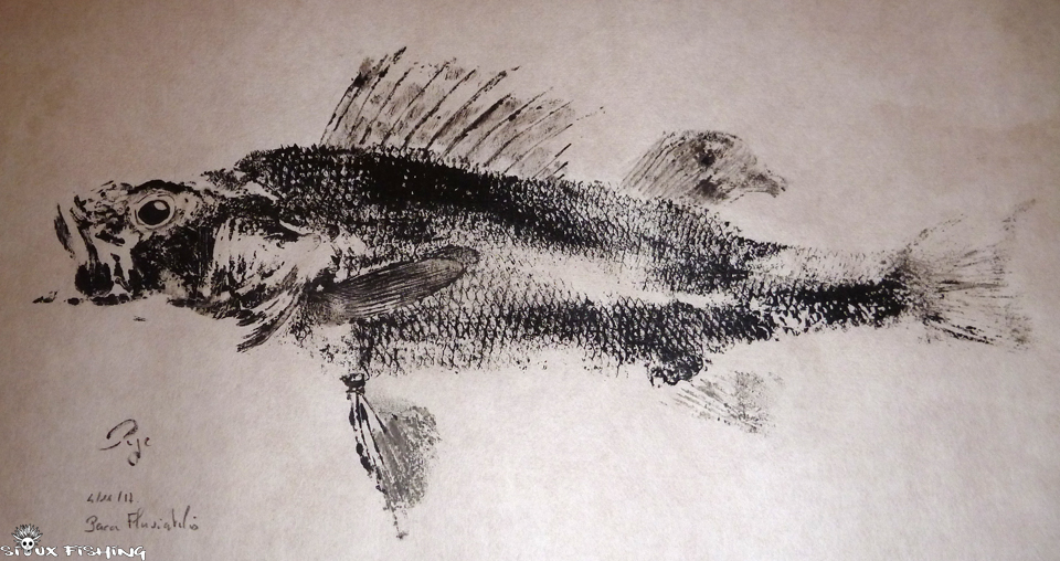 Gyotaku de perche commune
